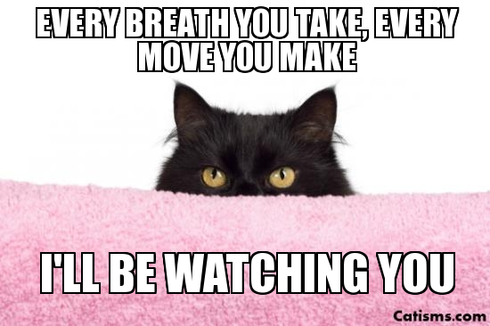 Image result for i'll be watching you