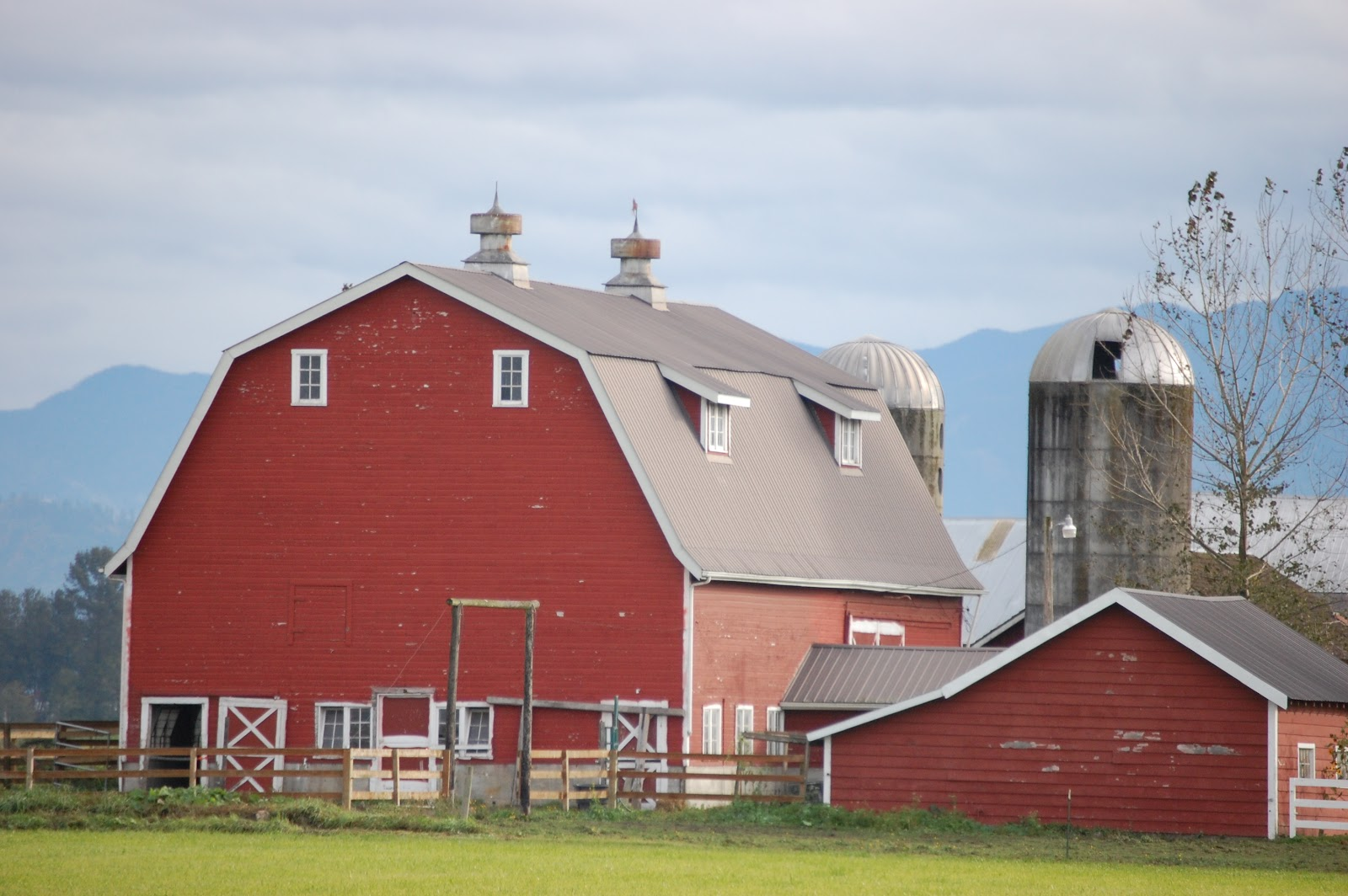 Written In Lynden: Red Barn, White Barn, Foggy Barn, Too