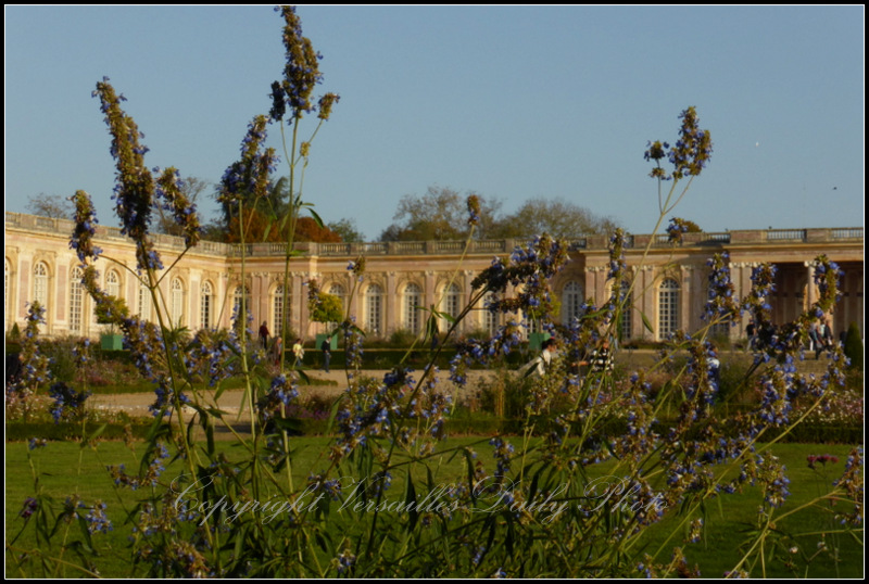 Grand Trianon autum Versailles