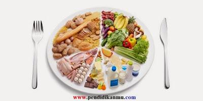Mengapa Kita Butuh Makanan