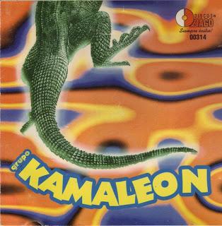 ►  Grupo Kamaleon
