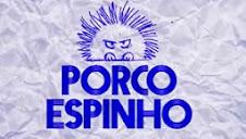 PORCO ESPINHO