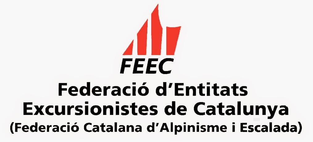www.feec.cat