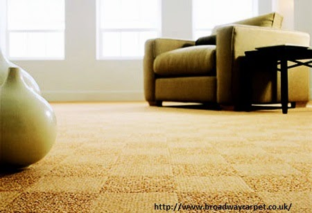 http://www.artofclean.co.uk/carpet-cleaning/