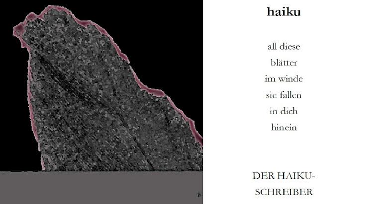 hackerei gegen HAIKU 2013 de mischa vetere - download UNscharf, ohne titel (wieder)