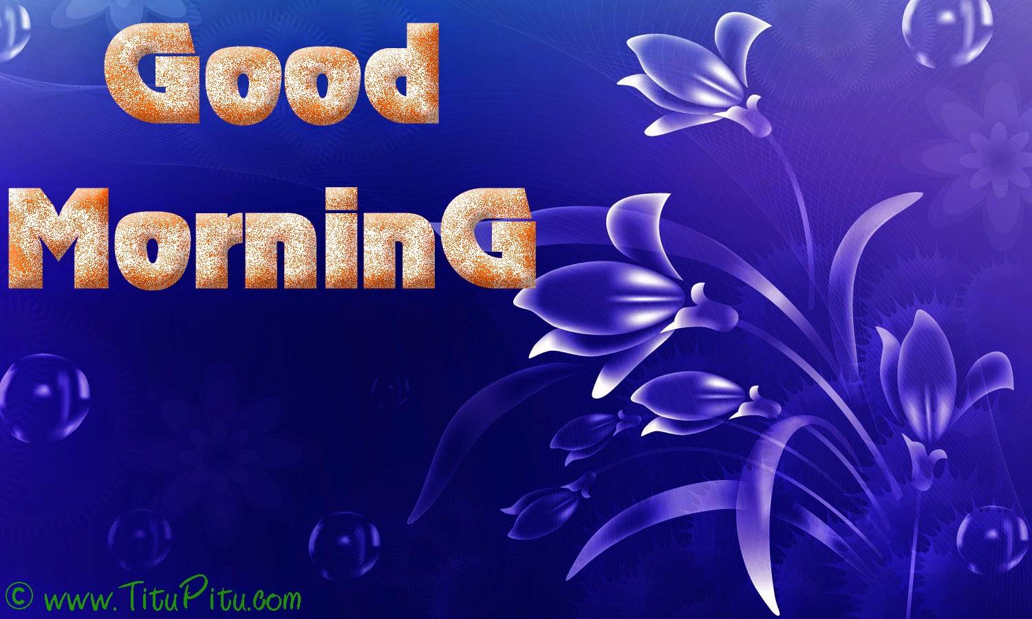 Sad Love Good Morning Wallpaper : Latest Good morning wallpaper Haryanvi makhol Jokes in Hindi Hindi jokes Sad Hindi ...