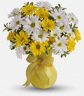 The Yellow & White Daisy bouquet from bloomex.ca