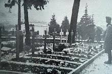Cimitero di Pisino
