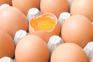 How settlers preserved eggs – 4/7/12