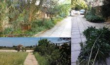 Καθαρισμοί οικοπέδων από χόρτα και κλαδιά