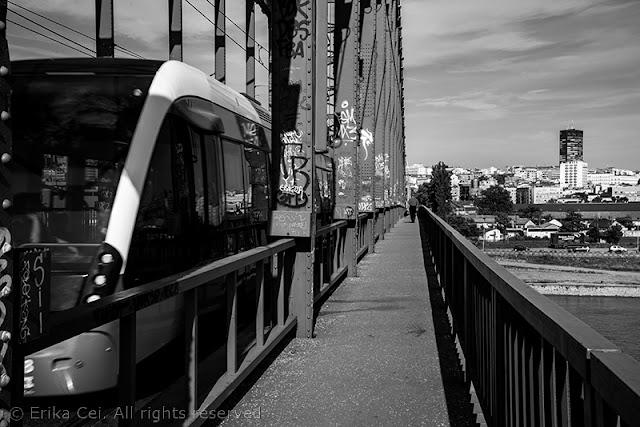 Belgrado ponte sulla Sava