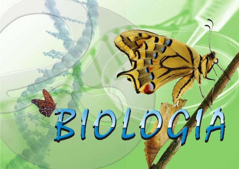 Portfólio Biológico 2012