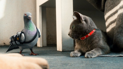 """Dogs and Cats: The Revenge of Kitty Galore """"Feline intelligence, huh? What's 8 times 8?"""""""