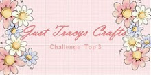 Lucky me! I did Top3 at Just Tracys Crafts callengeblog in August.