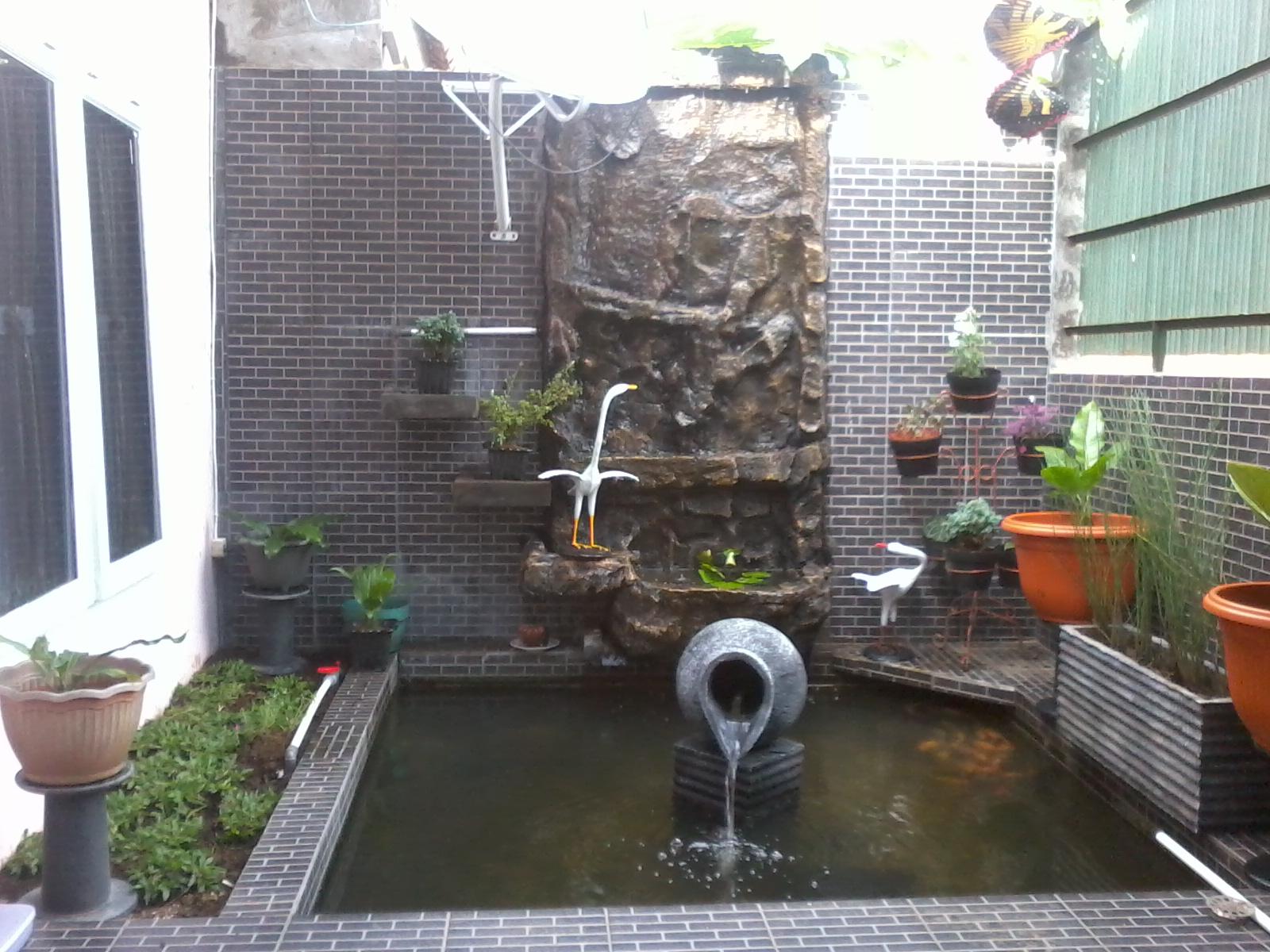 Taman Rumah Minimalis: Kolam Belakang Rumah
