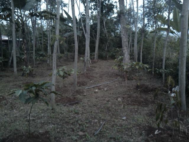 Rmh Batik Jawa Jual Tanah 374 m2 Hny Rp.110 jt, SHM, di Daerah Semarang-Boja