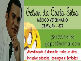 Dr.GELSON VETERINÁRIO