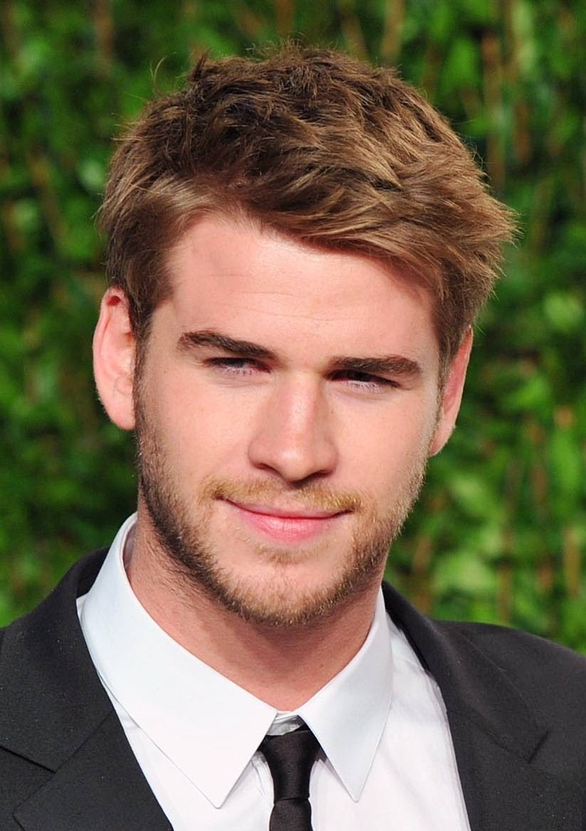 The Hunger Gamers • NEWS: Hunger Games' Liam Hemsworth ...