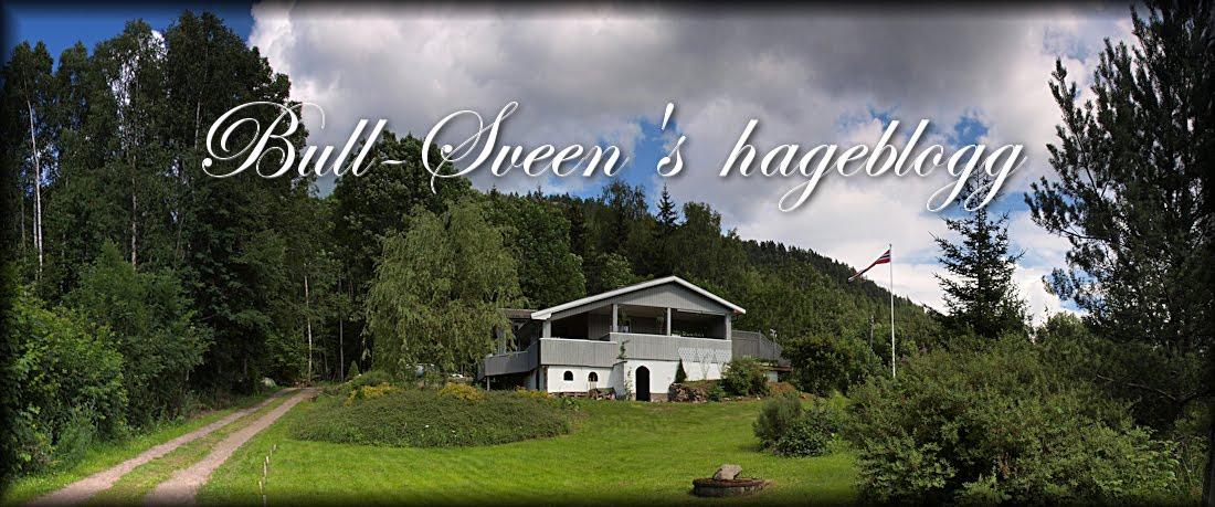 Bull-Sveen's hageblogg