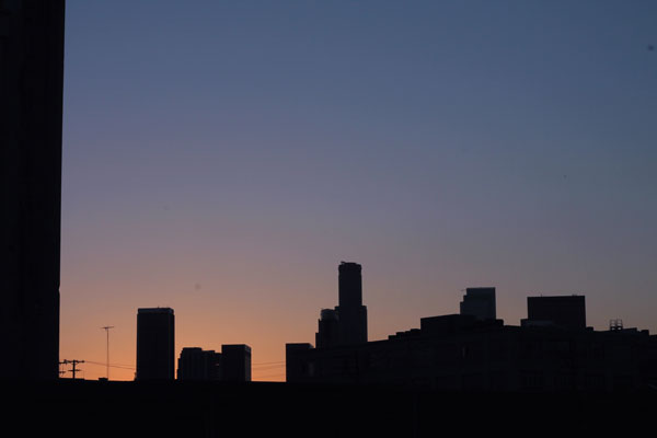 Downtown LA skyline by Melina Peterson