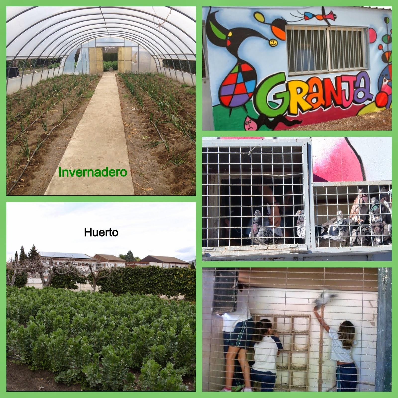 Huerto, granja e invernadero