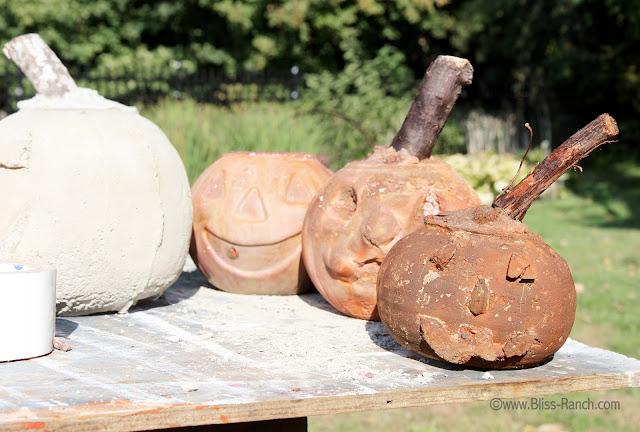 IMG_7978 Rit dye cement pumpkins