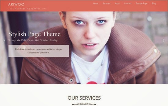 Ariwoo WordPress Theme