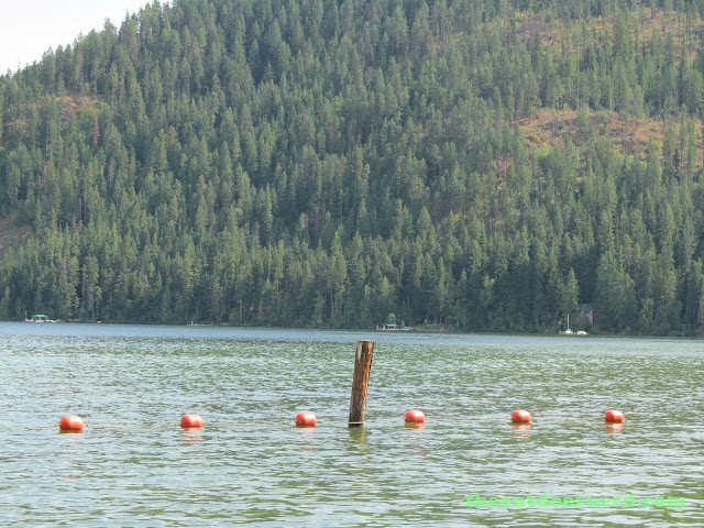 Outlet Campgrounds At Priest Lake, Idaho: View Of Cabins