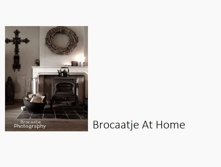 Brocaatje at Home