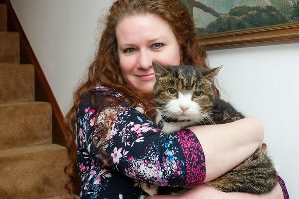 Con mèo gặp lại chủ sau 12 năm lưu lạc