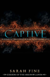 GET CAPTIVE