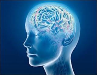 Tes Dominasi Otak Kiri dan Otak Kanan