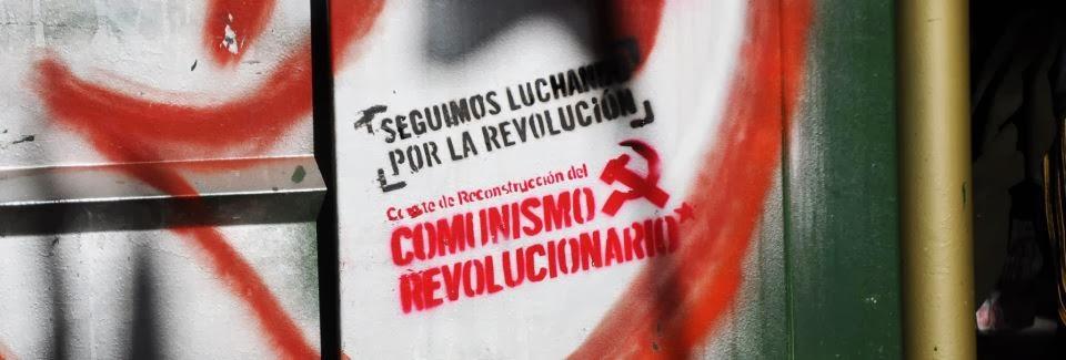 Seguimos luchando por la revolución