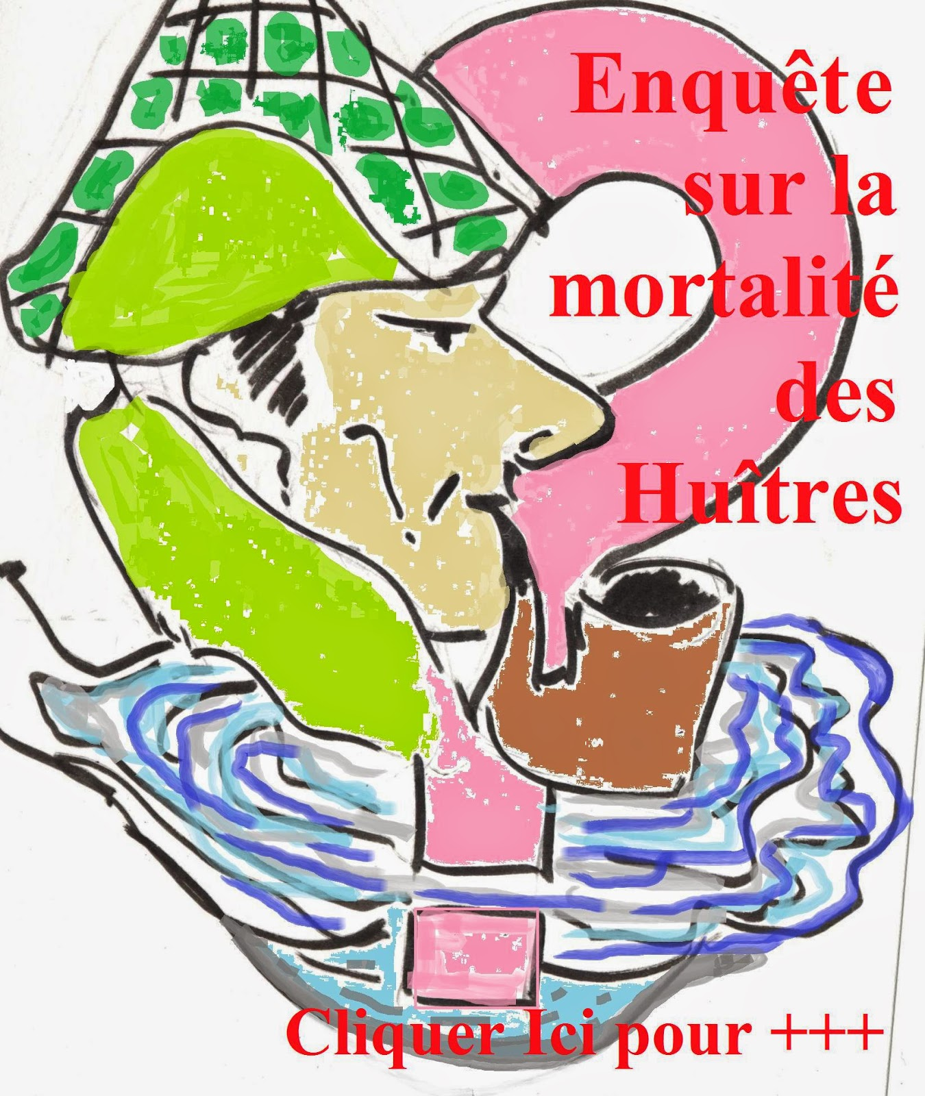 http://aquaculture-aquablog.blogspot.fr/2014/01/mortalite-huitre-enquete-le-bitoux.html
