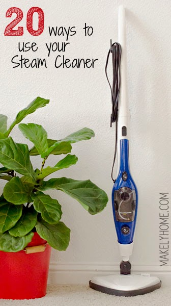 20 Ways to Use Your Steam Cleaner