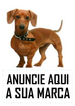 DICA DA MALU
