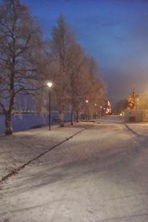 Park in Lapland