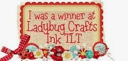Ladybug Crafts Winner