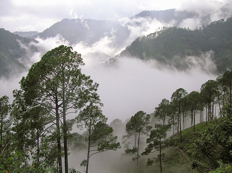 Misty Mountain in Nainital