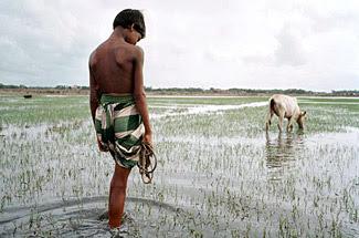 إرتفاع مستوى البحر والفيضانات تزيد من مخاطر العدوى بالأمراض المنقولة بالمياه