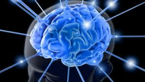 Benarkah Tes Intelligence Quotient atau IQ dapat menilai kecerdasan manusia?