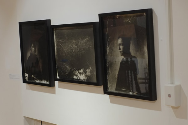 'untitled #2 and #3' by Kurt Sorensen, Collodon Plate photographs, MCAP 12 Chrissie Cotter Gallery.