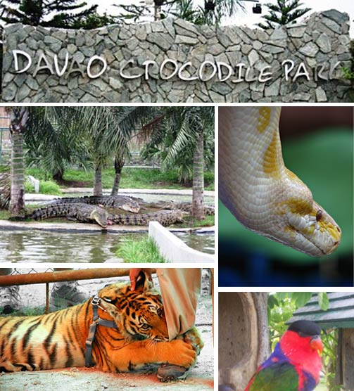 More Fun In Davao Region More Tourist Spots In Davao