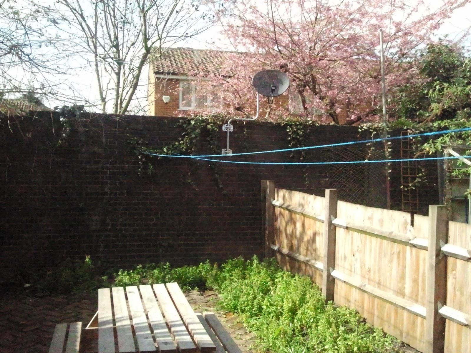 Anthony leguach coming to london mis colegas del barrio - Un jardin para mi ...