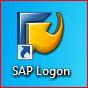 Icono SAP Logon