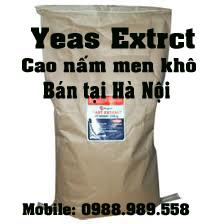 yeast, extract