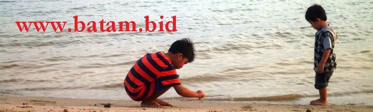 batam.bid - Kursus Bisnis Trading Forex Online  di Batam