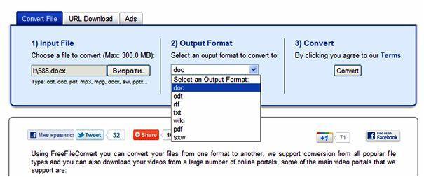 convert-docx-output format