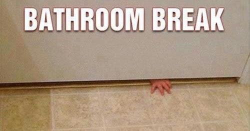 No bathroom breaks 28 images no bathroom breaks in the for Beavis and butthead bathroom break