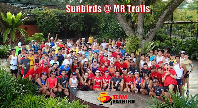 OSB13: Sunbirds @ MacRitchie Trails